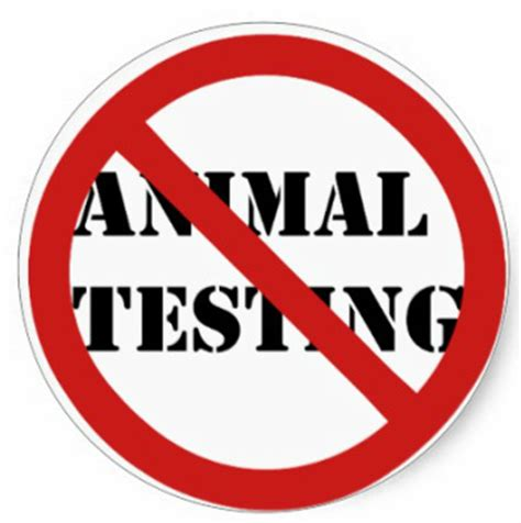 Animal Testing Shouldnt Be Banned Essay - Graduateway